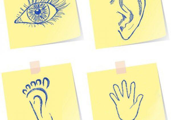 אבחון לקויות למידה בשיטת הקינסיולוגיה